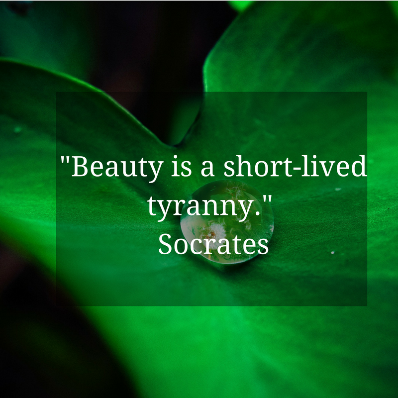 beauty-is-a-short-lived-tyranny-socrates